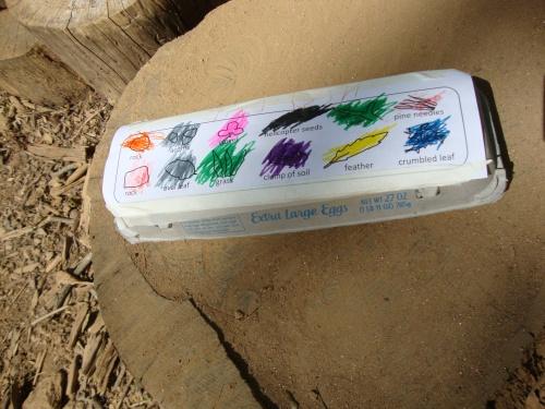 Egg Carton Scavenger Hunt