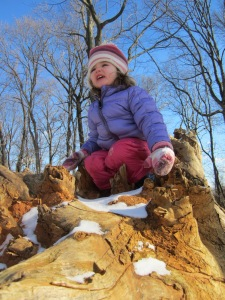 conquering the fallen tree