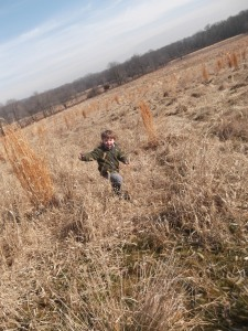 jumping in the winter meadow