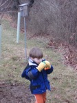 searching for bluebirds with binoculars
