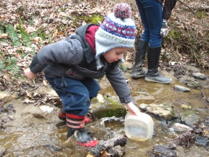 searching in the vernal pool