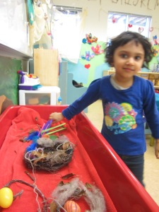 making nests in the sensory table