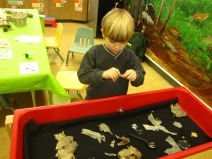 snake things in the sensory table