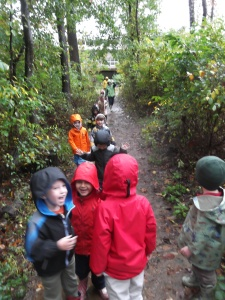 in the rainy autumn woods
