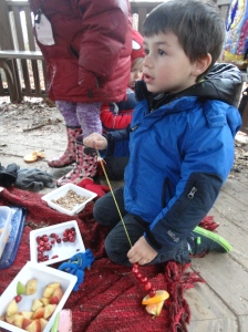 stringing fruit to make bird feeders!